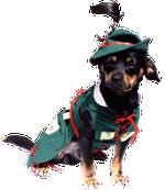 Costumaş de vânătoare ROBIN HOOD