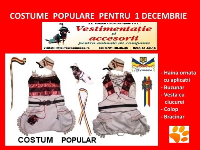 Costum popular  1 DECEMBRIE