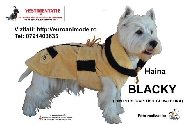 Haina  BLACKY