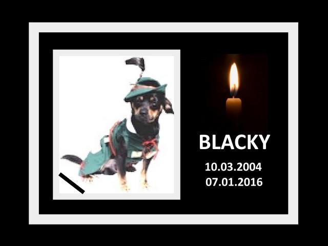 BLACKY (2)
