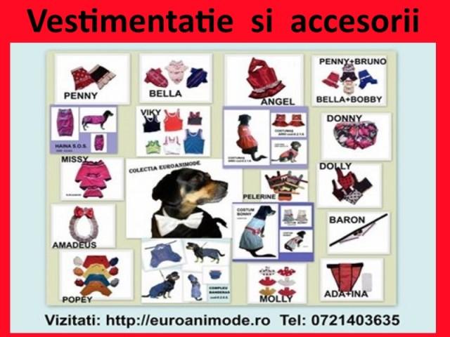 Vestimentatie si accesorii