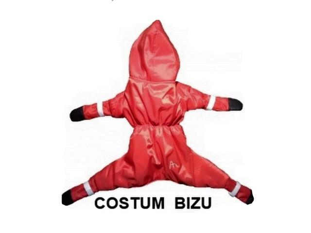 Costumul BIZU cel mai compex costum ( haina, pantalon, papucei, gluga ).