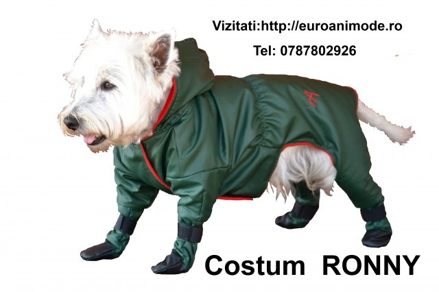 COSTUM RONNY -1- - Copie
