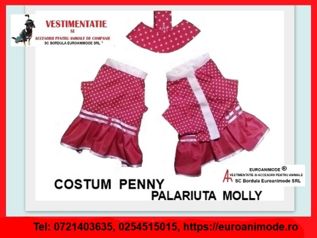 Costumul PENNY + palariuta MOLLY