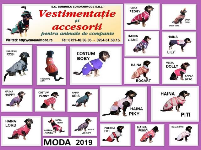 Vestimentatie 2019