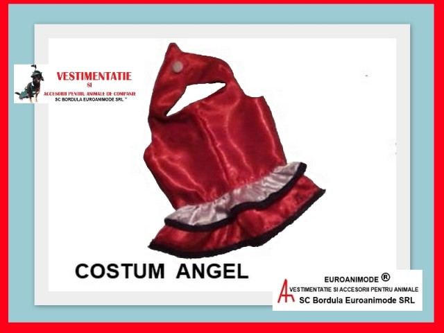 Costum ANGEL