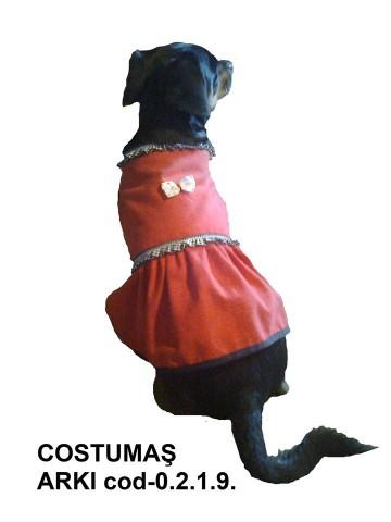 Costumul ARKY