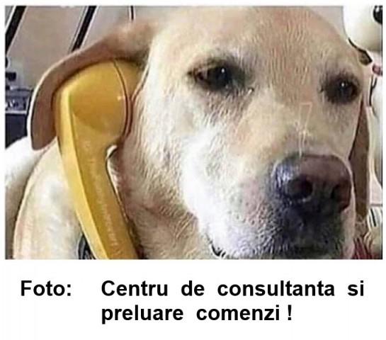 COMENZI